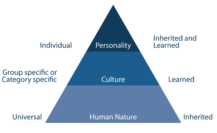 Geert Hofstede's Cultural Dimensions Theory